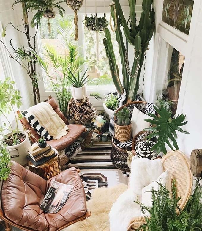 Plantas colgantes para salón