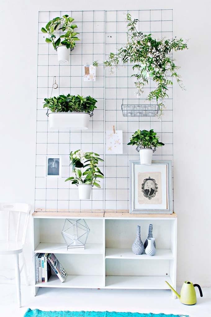 Enrejado para plantas colgantes de interior